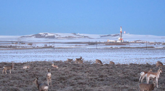 686544d1333734456-moab-blm-starting-process-open-oil-gas-drilling-pinedale-ozone02-560x310